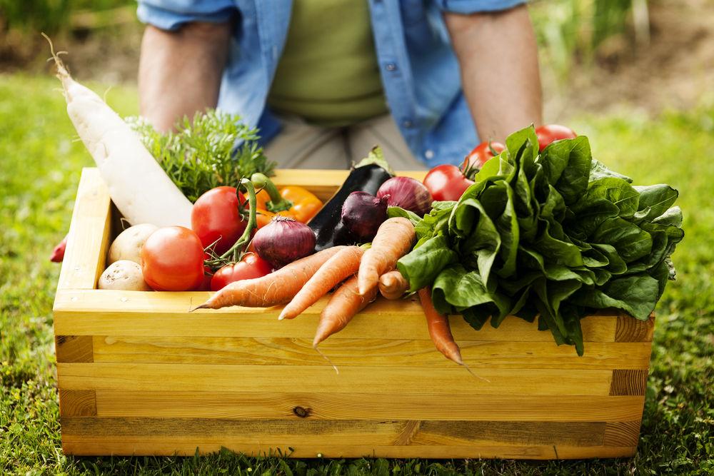 Warzywa (1)